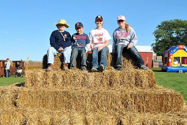 We have Hay for Sale!